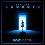 دانلود آهنگ بی کلام The Last Goodbye از Rok Nardin