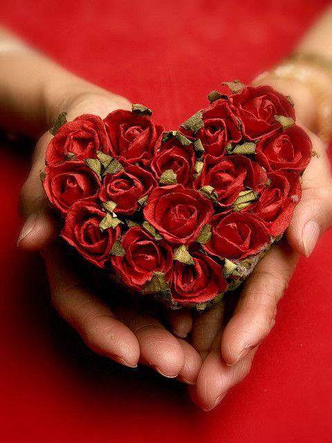 دانلود آهنگ من یه گل سرخی دارم جای قلب بی قرارم میثاق راد